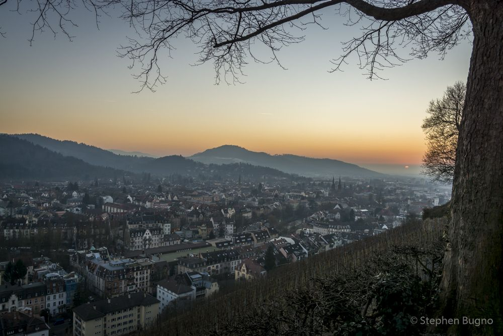 Freiburg im Breisgau at Twilight